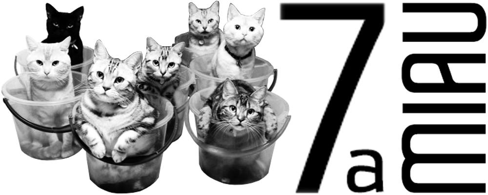 7a_miau-blog